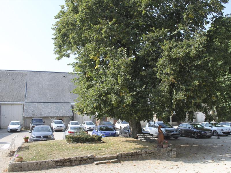 Abbonville parkin